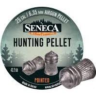 Brand, Seneca Slugs